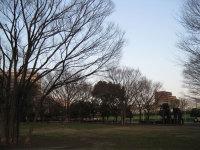 20100311b_edit
